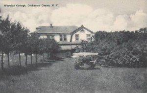 New York Cochecton Center Wayside Cottage Albertype
