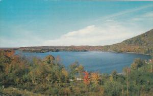 Autumn Trees, Lac Orford, Lake Orford, Quebec, Canada, PU-1987