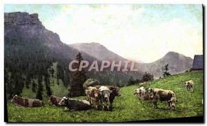 Old Postcard Cows Switzerland