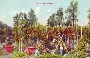 162- HOP PICKING SOUVENIR PUBL. CO. WORKERS IN FIELD