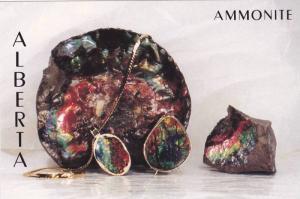 Alberta AMMONITE , Canada , 60-80s