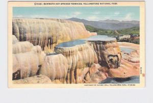 VINTAGE POSTCARD NATIONAL STATE PARK YELLOWSTONE MAMMOTH HOT SPRINGS TERRACES #8