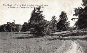 Cassopolis, Michigan, MI, Road to Forest Hall, Unused Vintage Postcard h3600