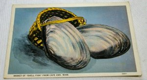 Vintage Postcard Basket of Shell Fish From Cape Ann, Mass