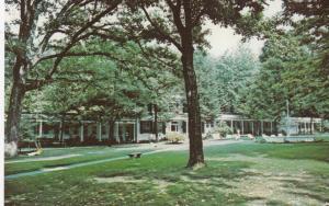 CAPON SPRINGS, West Virginia, 1940-60s; Pavilion & Grove, Capon Springs & Farms