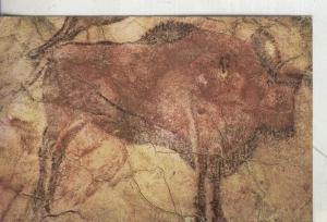 Postal 4006 : Cueva de Altamira: Bisonte