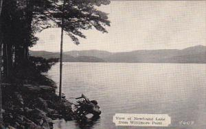 New Hampshire Bristol Newfound Lake From Wittimore Point Dexter Press