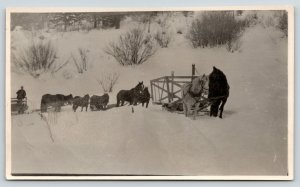 Real Photo Postcard~Horses Pull Sled Wagons Up Hill~Deep Snow~c1908 RPPC