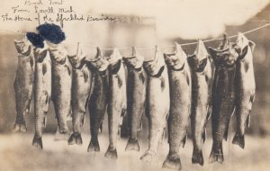 RP: LOVELL , Michigan , 1915 ; Brook Trout