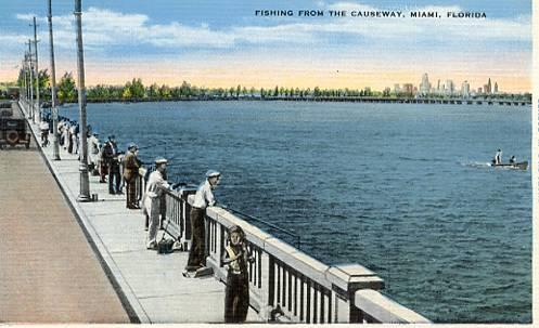 FL- Miami- Fishing from the Causeway