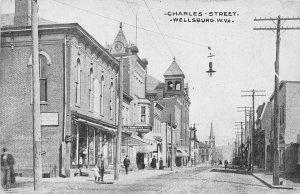 F42/ Wellsburg West Virginia Postcard c1910 Charles Street Stores 11