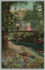 La Salle Co IL~Tall Lady, Shorter Man on Footbridge~Starved Rock State Park 1910