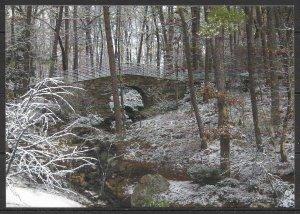 Arkansas - Garvan Woodland Gardens - Full Moon Bridge - [AR-013]