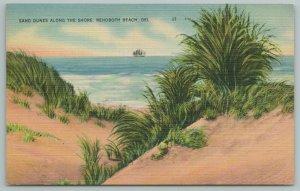 Rehoboth Beach Delaware~Sand Dunes Along The Shore~Vintage Postcard