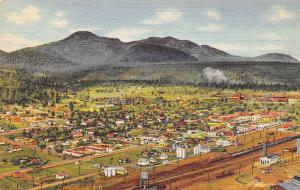 Williams Arizona~Panorama~Homes~Elevators~Railroad Trains & Tracks~1941 Linen PC