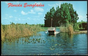 31720) Florida Air-boat rides through the Florida Everglades - Chrome