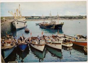 St.Mary's - Isles of Scilly - Post Card - Unused