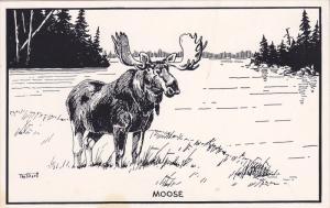 AS: T. M. Shortt, Moose, Toronto, Ontario, Canada, 1940-1960s