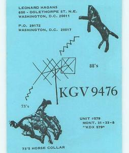 Horse - Qsl Ham Radio Card Washington DC t1681