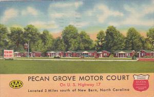Pecan Grove Motor Court, On U.S. Highway 17, New Bern, North Carolina, PU-1952
