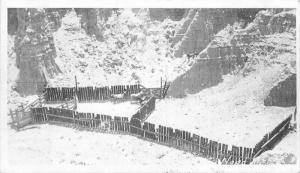 Arizona Grand Canyon 1930s Postcard Looking down Trap horses Captured 2572
