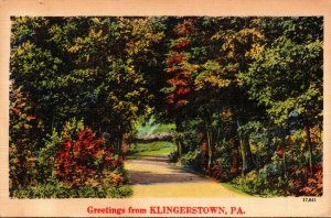Pennsylvania Greetings From Klingerstown 1947