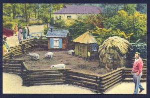 Three Little Pigs Belle Isle Zoo unused c1940's