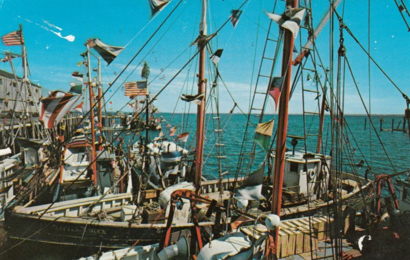 PROVINCETOWN, Cape Cod, Massachusetts, PU-1984; Blessing of the Fishing Fleet
