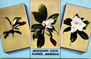 Mississippi State Flower The Magnolia Blosssom 1951