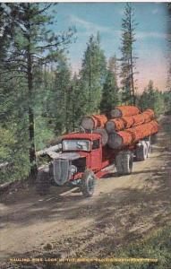 Trees Truck Hauling Pine Logs In The Scenic Pacific Northwest