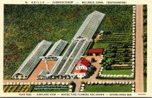 Connecticut Milldale N Grillo Nursery Floriculturist Curteich