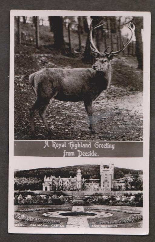 Balmoral Castle & Stag Real Photo - Unused