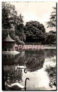 Modern Postcard Toulouse Le Jardin Royal Swans