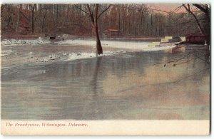 The Brandywine, Wilmington, Delaware - 1912 UDB Postcard