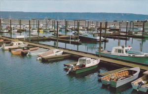 Alaska Homer New Boat Harbor On The Homer Spit