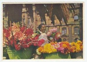 Flower seller, Cape TOWN, SOUTH AFRICA, 50-70s