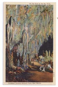 Carlsbad Caverns Big Room New Mexico Curteich Linen Postcard