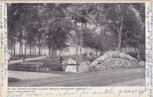 Scene in Upper Division, Branch Brook Park, Newark, New Jersey, PU-1906