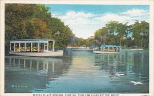 Seeing Silver Springs Through Glass Bottom Boats Florida Curteich