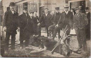 New Liskeard ON Men w/ Dead Moose Hunters Gun Miles Houck Postcard E63 *as is
