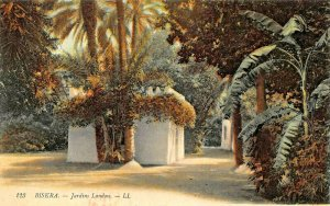 BISKRA ALGERIA AFRICA~JARDINS LANDON~TINTED LL PHOTO POSTCARD