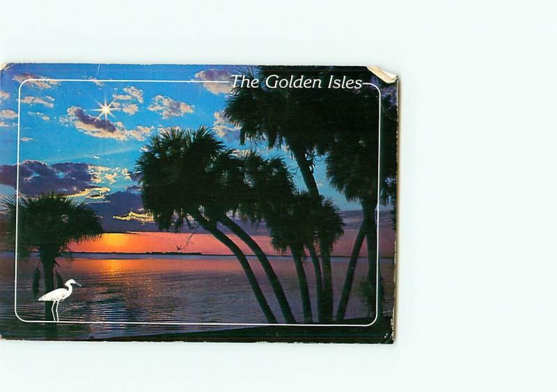 Vintage Postcard Sunset Moonrise Golden Isles Florida  # 3341