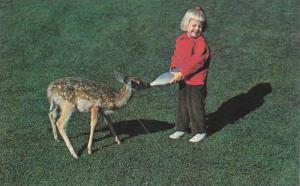 Little Blond Girl Feeding Baby Deer from Milk Bottle, Greetings from The Wate...