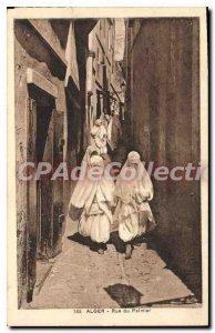 Postcard Old ALGIERS palm street