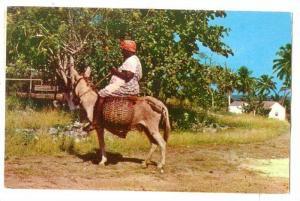 Woman riding a donkey, Market Bound, Jamaica, B.W.I.  PU-40-60s
