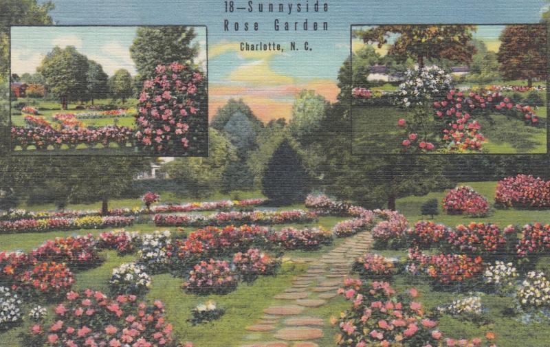 CHARLOTTE , North Carolina , 30-40s ; Sunnyside Rose Garden