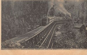 LPS06 Siskiyou Mountain Grade Dollarhide Train Trestle Colorado Postcard
