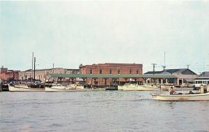 Crisfield Maryland~Boats Moored at Town Marina~Business Behind~1950s Postcard