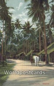 Native Village Penang Malaysia Unused