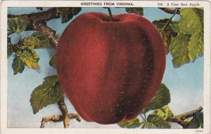 Virginia Greetings From Virginia With A Fine Red Apple 1948